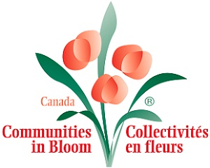 Communities in Bloom logo