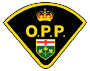 OPP logo 2 (better one)