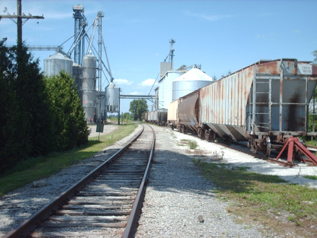 Grain hopper cars on a siding beside former CSX line in Tupperville (Photo by Simon Crouch)