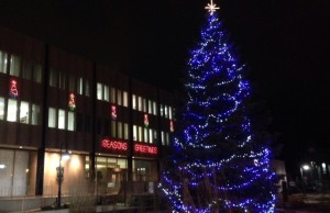 Sarnia City Hall - XMas at Night