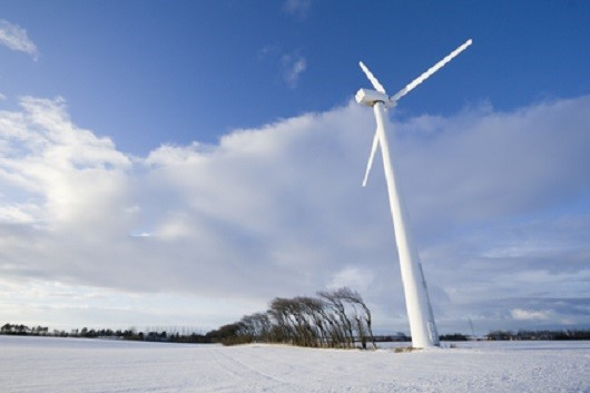 Wind turbine in snow filled landscape. A row of wind blown trees separates two fields.