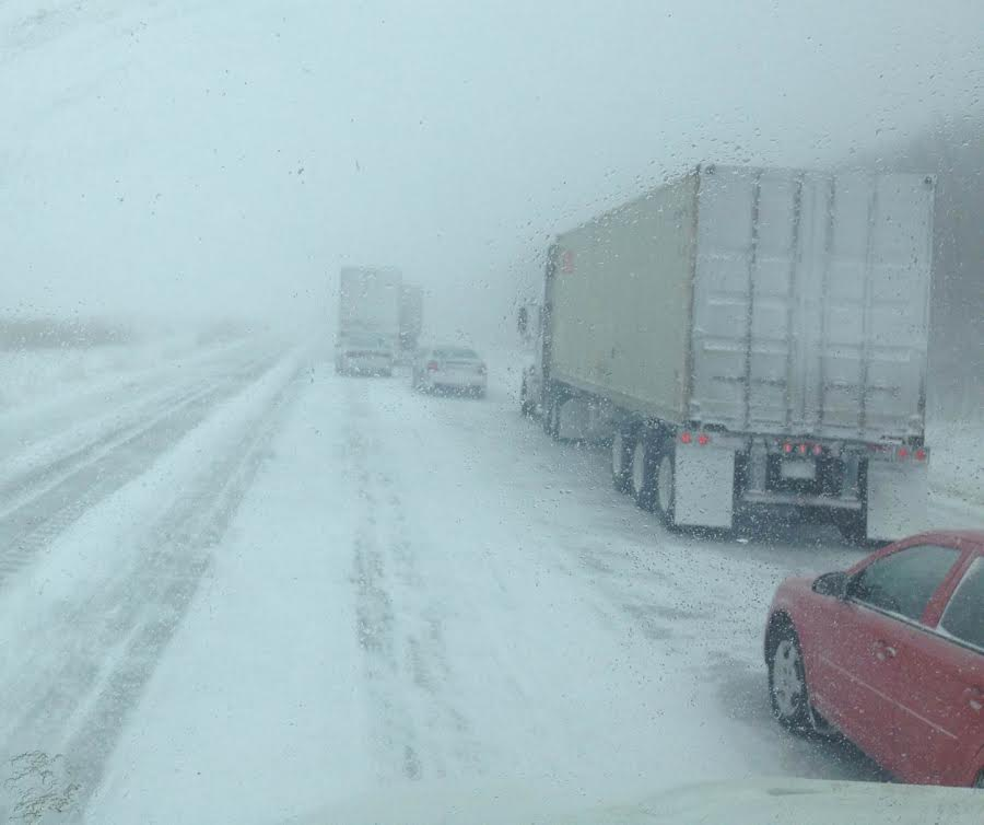 Highway 402 WB traffic sits at a stand still following several multi-vehicle collisions February 27, 2014 (Photo taken by Tim Irwin)