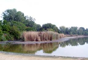 Lake Chipican in Canatara Park. BlackburnNews.com File Photo