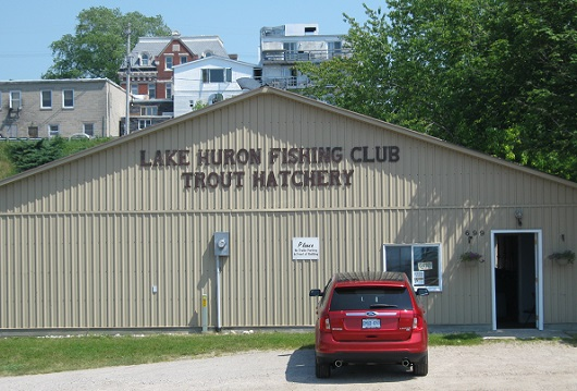 Lake Huron Fishing Club Gets Money for River and Stream Study