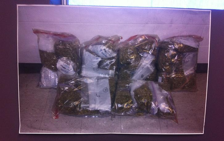 Marijuana from OPP bust2 - March 7, 2014