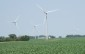 Wind Turbines in a cornfield. BlackburnNews.com File Photo.