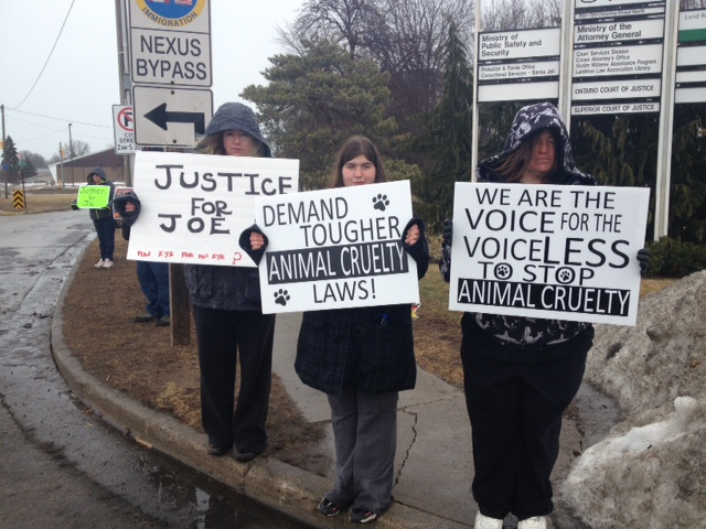 Protest for harsher animal cruelty penalties outside Sarnia courthouse. March 19, 2014. (Photo by Chelsea Vella)
