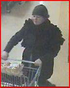 fraud, theft, debit card, windsor, essex county, opp