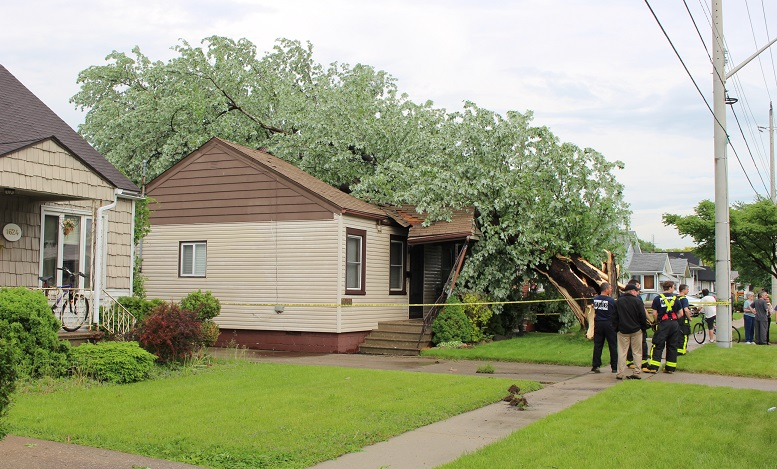 A tree destroys a George Ave. home in Windsor during a thunderstorm, May 27, 2014.