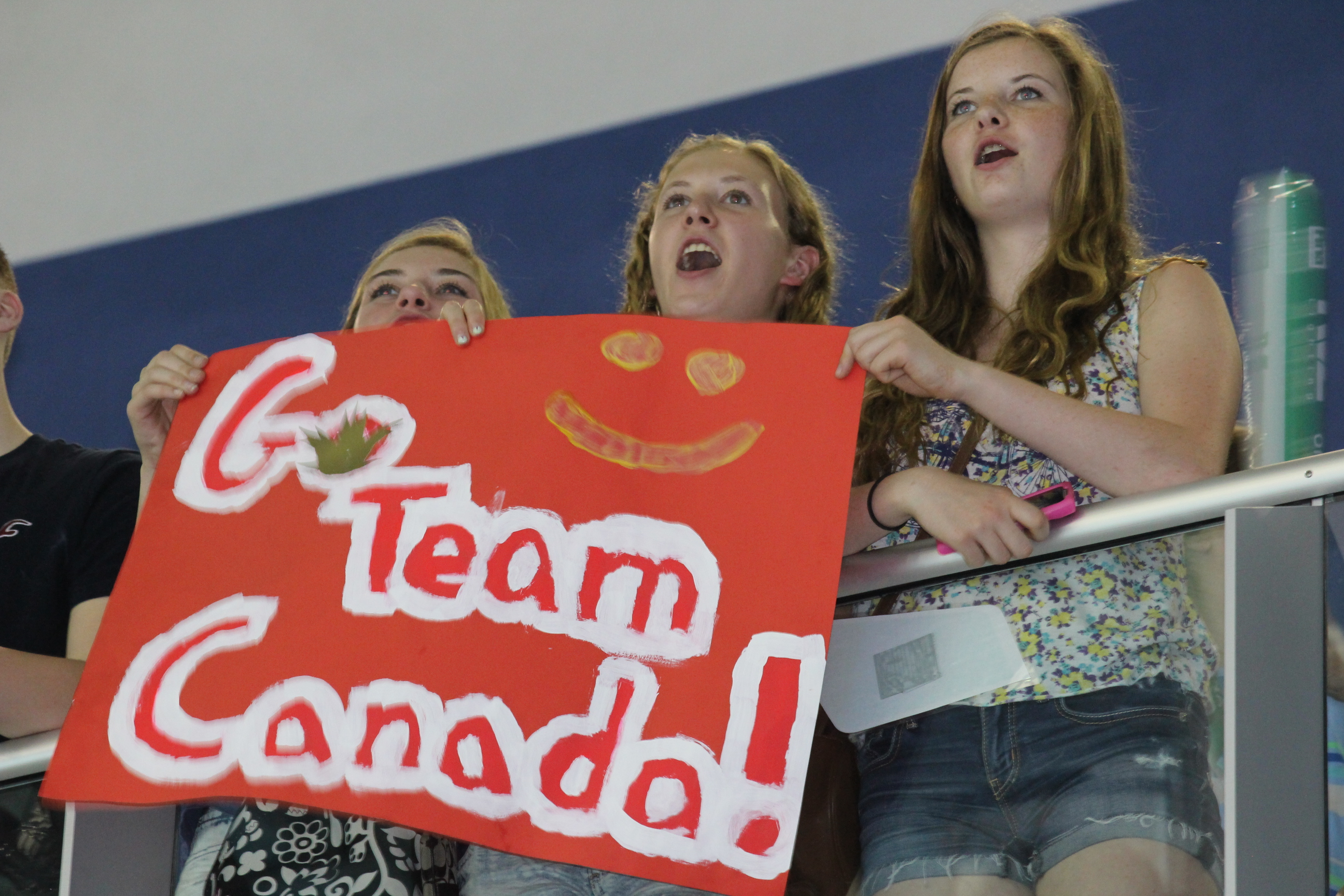 Fans at the FINA World Diving Series event in Windsor on June 1, 2014. (Photo by Ricardo Veneza)
