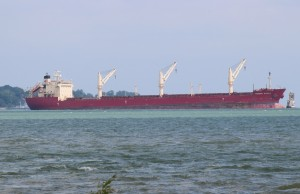 The freighter Federal Rideau grounded in a channel of Lake St. Clair. July 28, 2014. (Photo by Maureen Revait)