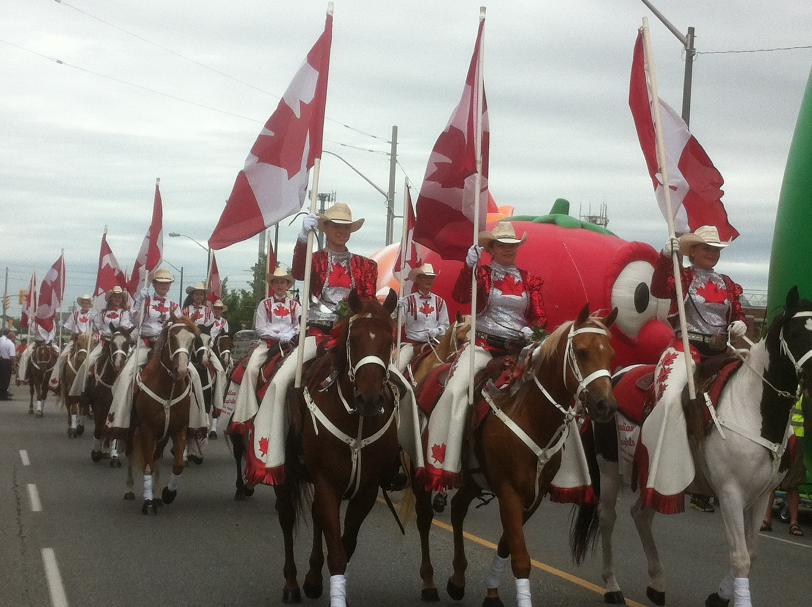 Horses at Windsor's 2014 Canada Day Parade. (Photo by Adelle Loiselle.)
