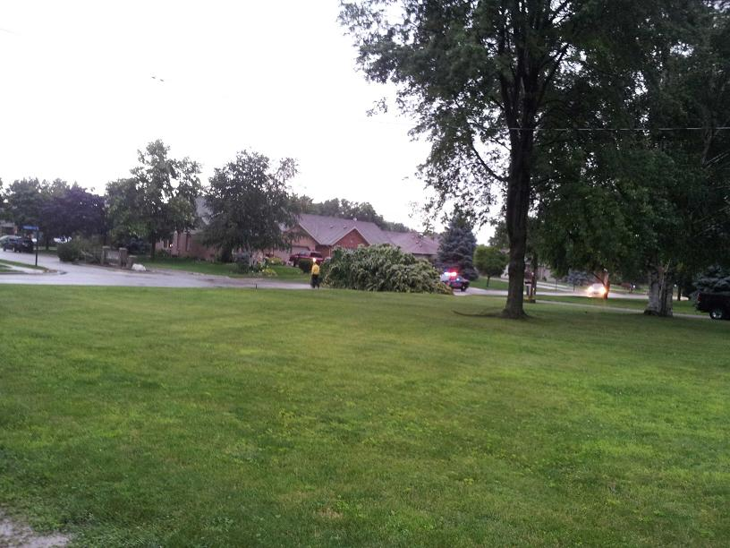A downed tree blocks Gregory Dr. E. at Northern Trace subdivision in Chatham. (Photo courtesy of Brandon Stuart)