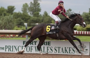 Colitmus Prime at the Prince of Whales Stakes, July 29, 2014. (Photo courtesy the Canadian Press)