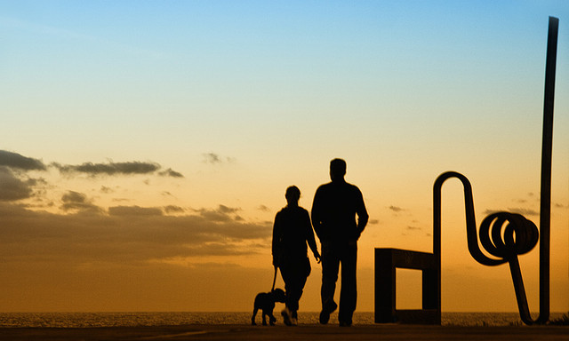 silhouette of a couple walking their dog at sunset