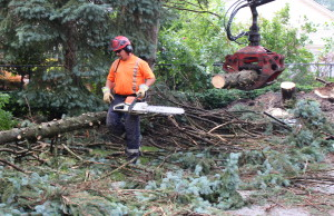 Cleanup after a severe thunderstorm, August 20, 2014. (Photo by Adelle Loiselle.)