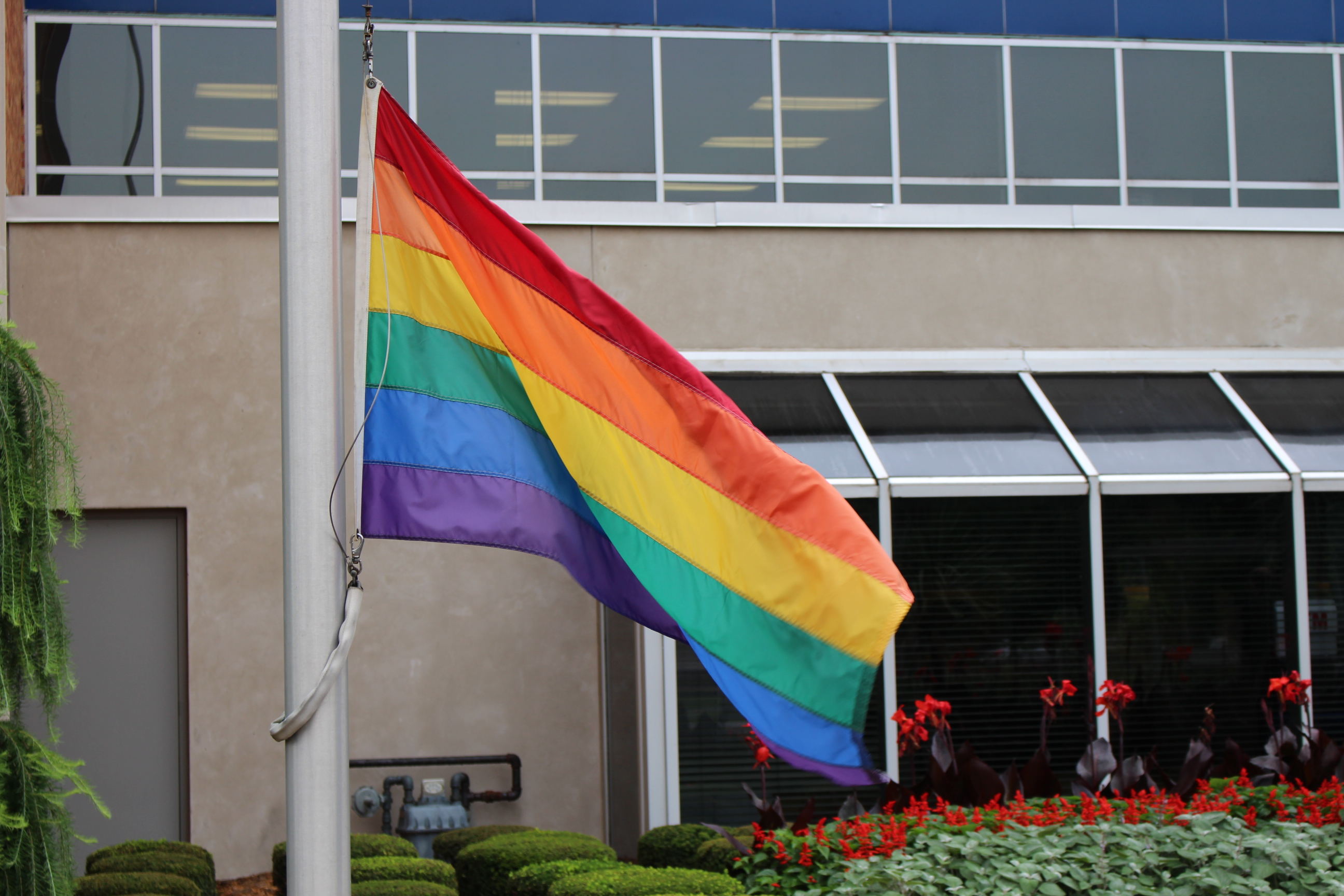Pride flag flying at Windsor City Hall August 5, 2014. (Photo by Adelle Loiselle.)