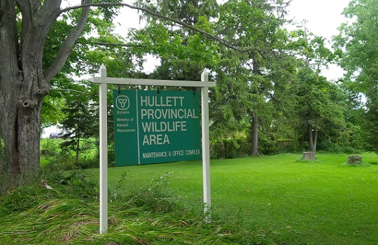 Man Charged for Unlawful Hunting at Hullet Wildlife Area in Huron