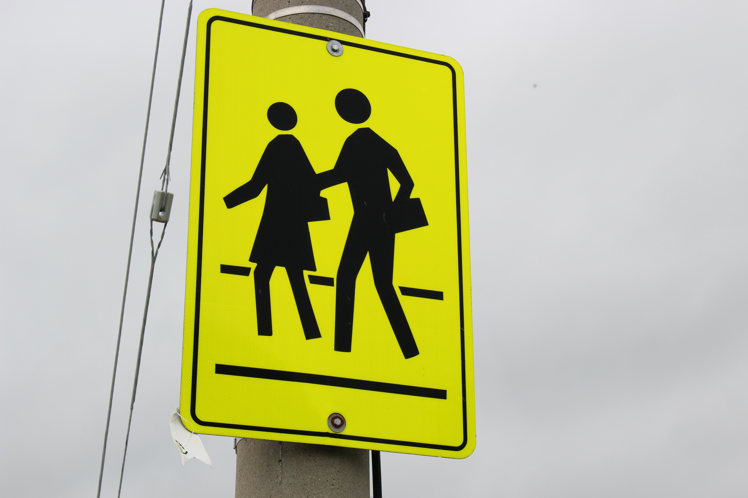 A school crossing sign. (Photo by Adelle Loiselle.)