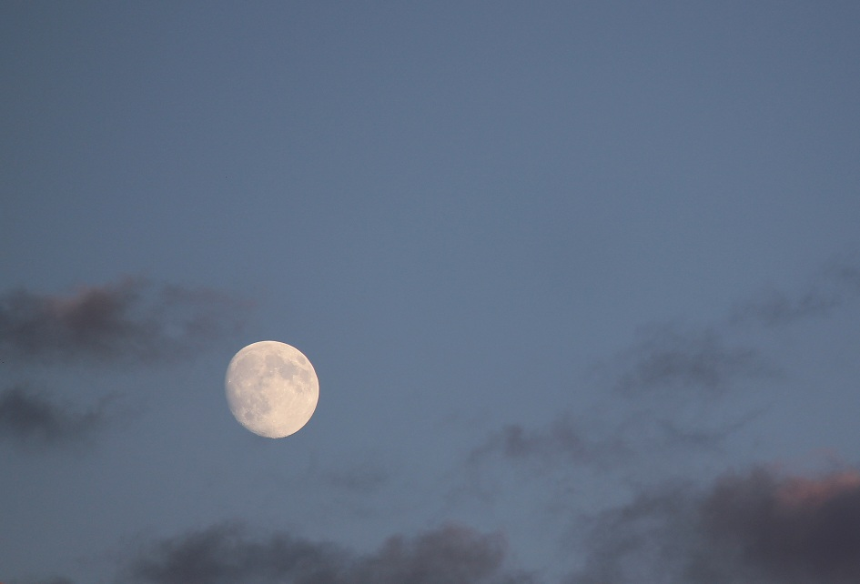 The moon, September 6 2014. (Photo by Adelle Loiselle.)