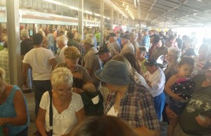 Horse racing fans gather at Leamington Raceway for the first race day of the season, September 7, 2014. (Photo courtesy of Cordell Green)