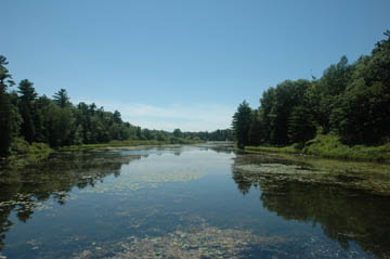 Pinery Provincial Park File photo.