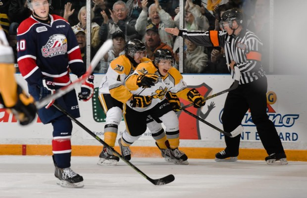 Troy Lajeunesse celebrates his first OHL goal in a Sarnia Sting win. October 10, 2014 (photo courtesy of Metcalfe Photography)