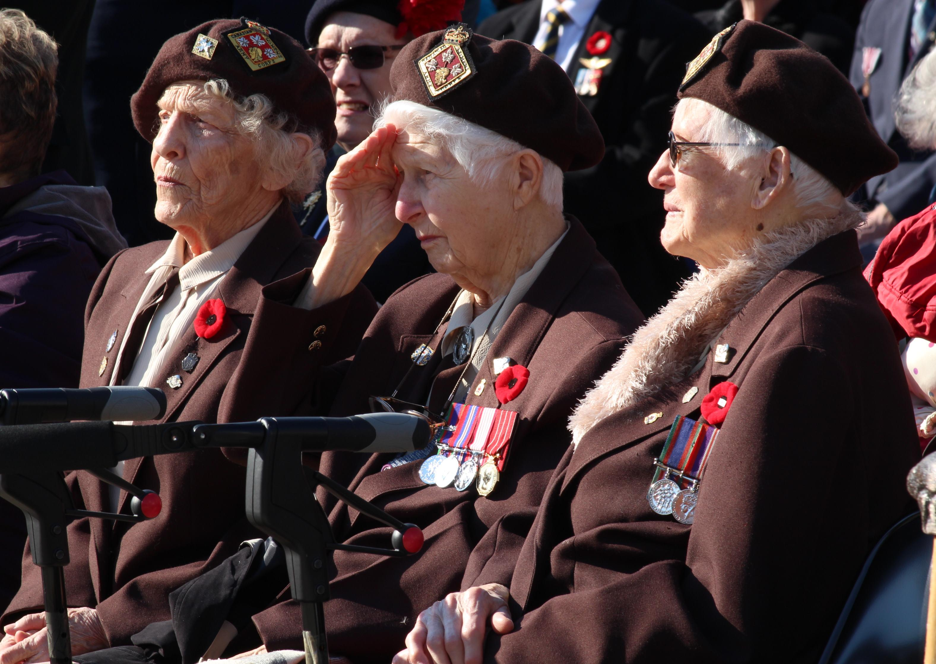 Veterans honoured at Remembrance Day ceremonies at the cenotaph in Windsor, November 11, 2014. (photo by Mike Vlasveld)