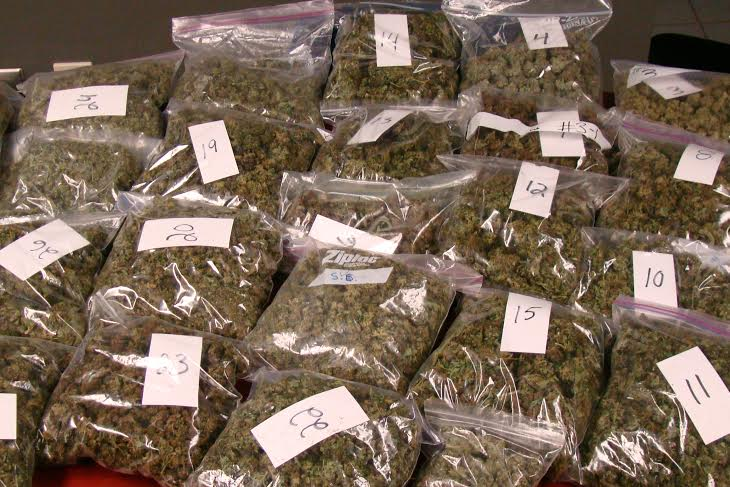 Some of the processed marijuana seized by C-K police in Chatham Jan. 13 2015 (Photo Courtesy Chatham-Kent Police)