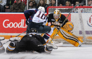 The Spitfires down the Sting 3-2 in OT Sat. Jan. 24, 2015 (Photo courtesy of Metcalfe Photography)