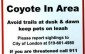 City of London sign warning of coyote in the area