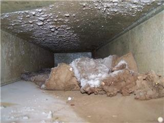 Dirty air ducts. (Photo courtesy Ontario Duct Cleaning/Yellowpages.ca)