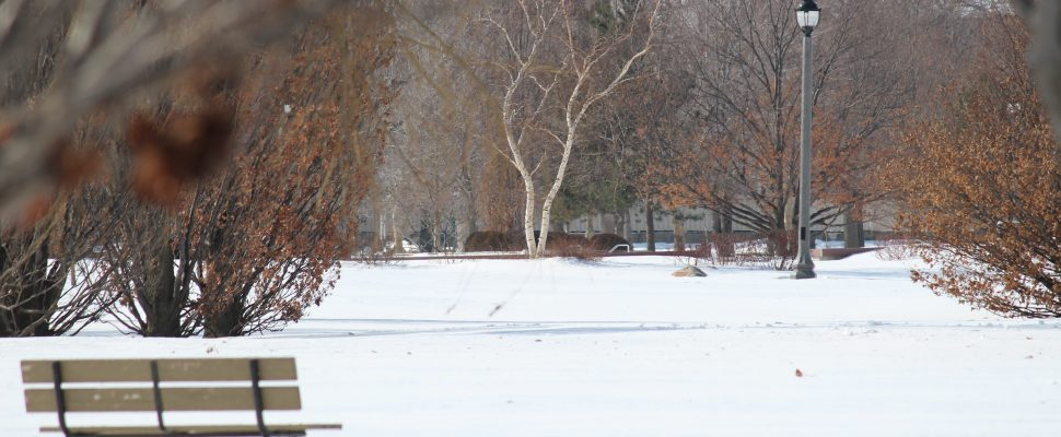 BlackburnNews.com file photo of Reaume Park in Windsor on February 19, 2015. (Photo by Jason Viau)