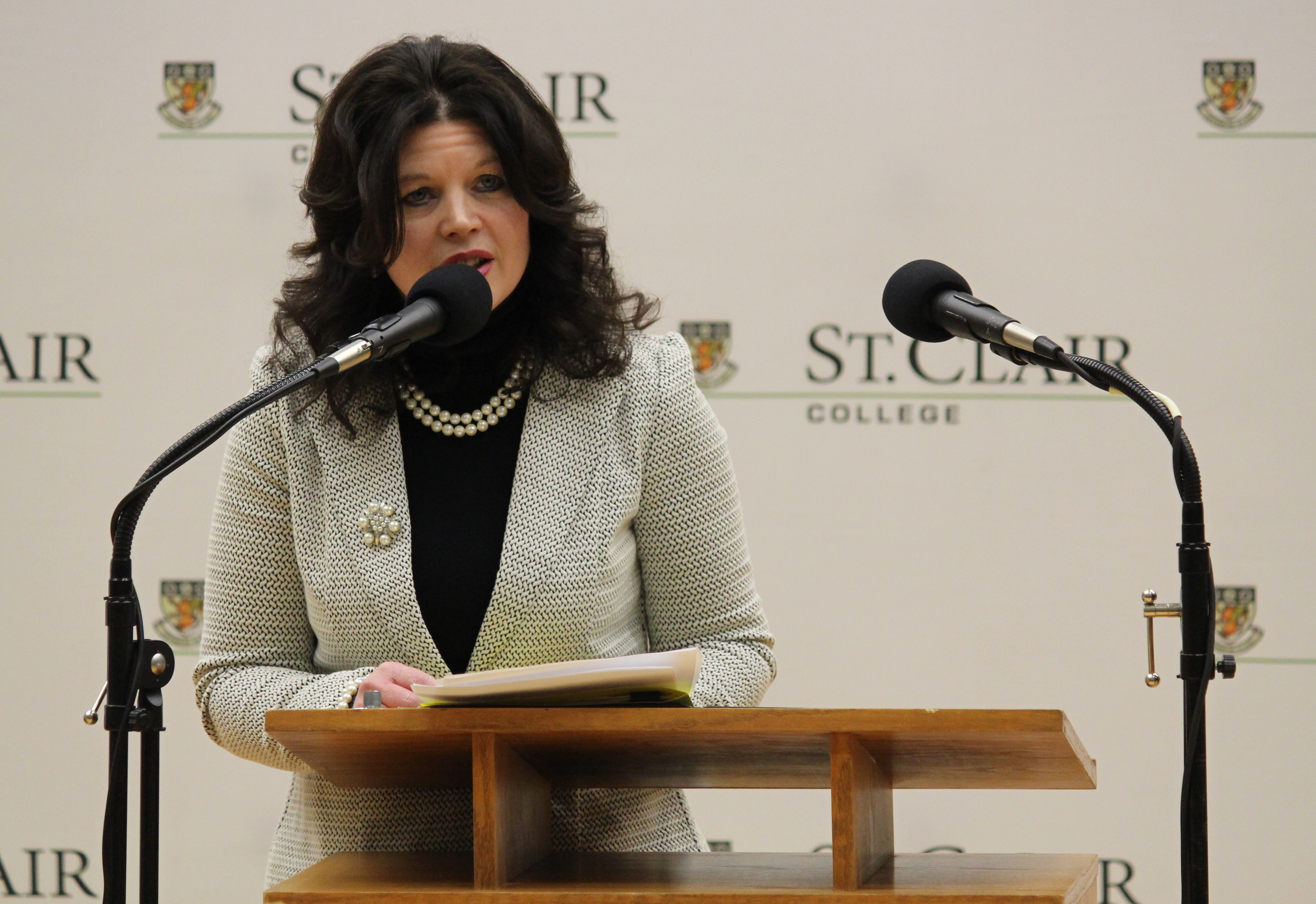 St. Clair College Senior VP of Operations Patti France speaks about taking over as school president in the fall, February 26, 2015. (Photo by Mike Vlasveld)