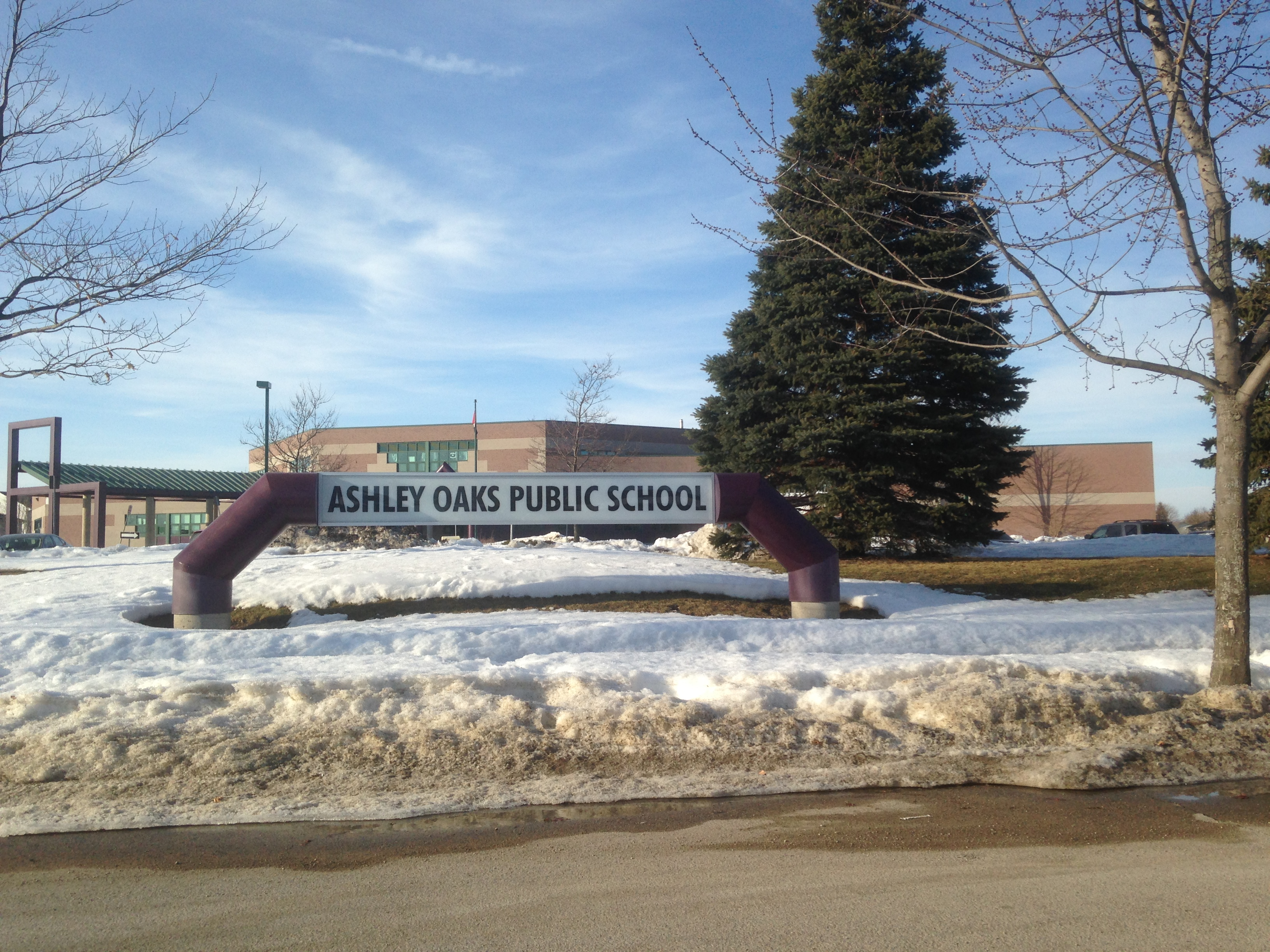 Ashley Oaks Public School