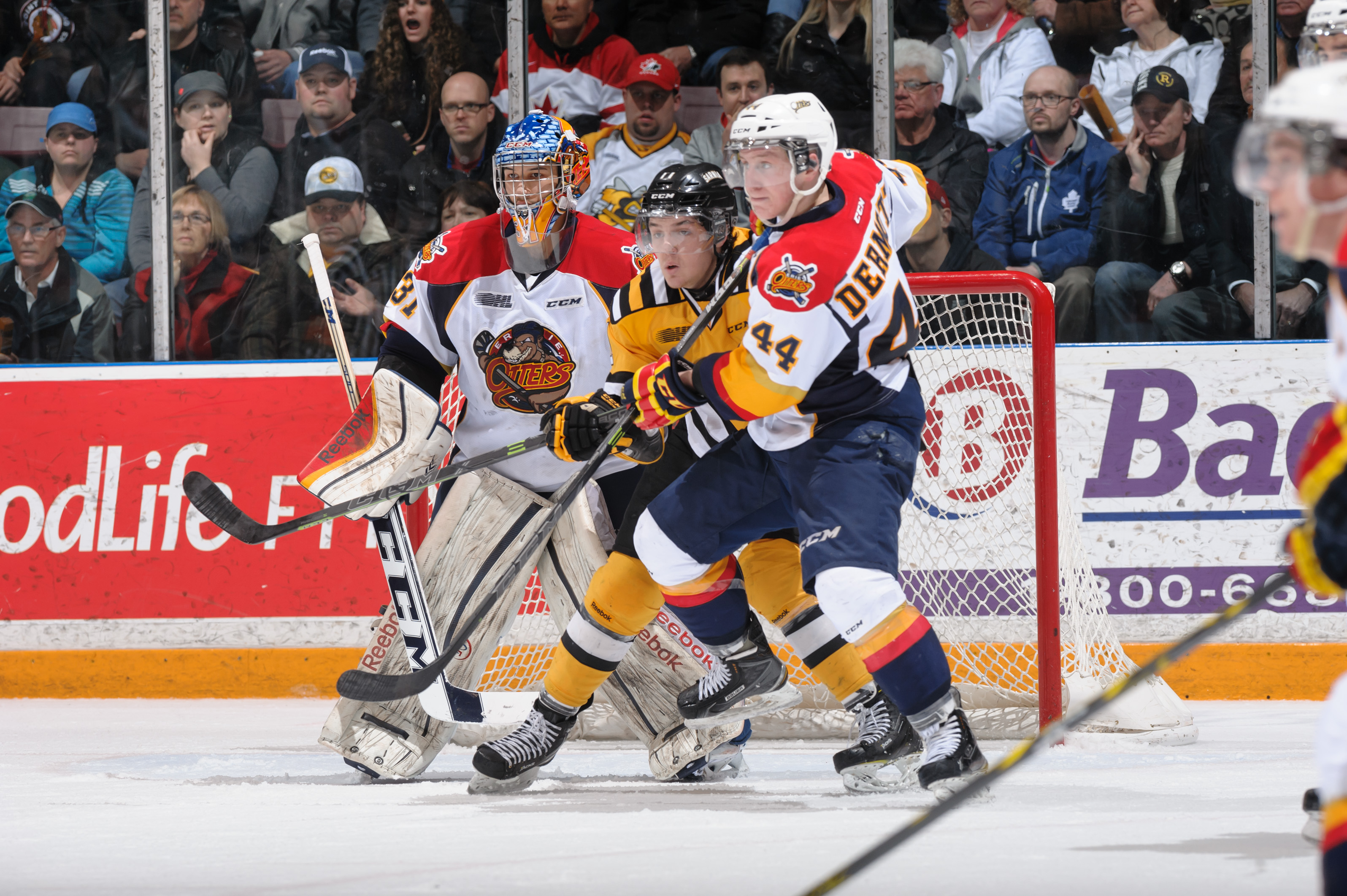 Sting vs Otters, Gm 3, Mar. 29, 2015 (Photo courtesy of Metcalfe Photography)