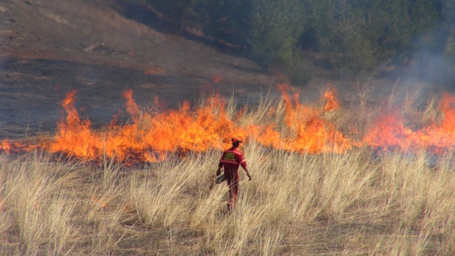 Controlled Burn Conducted Near Hanover