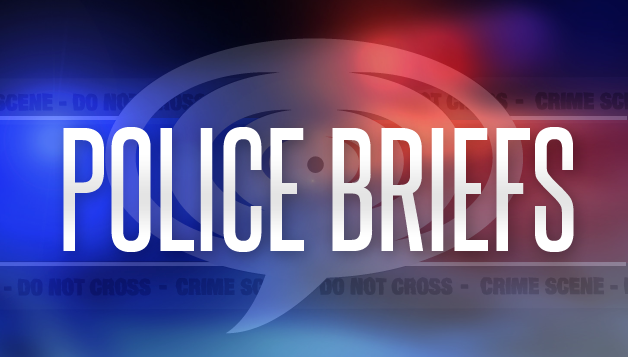 Police Briefs – Sunday, August 30, 2015