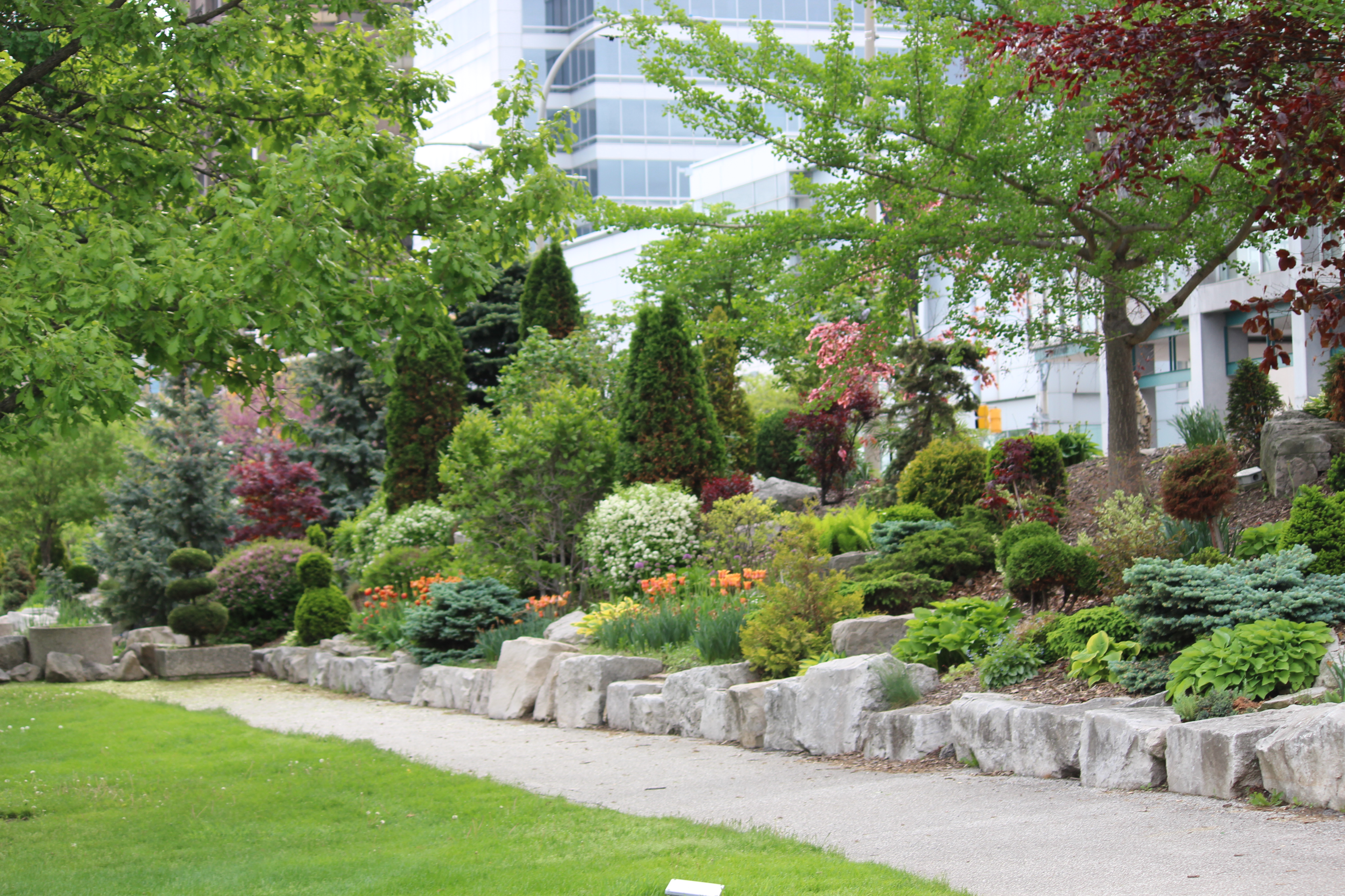 A City of Windsor garden in Dieppe Park May 20, 2015. (Photo by Adelle Loiselle)