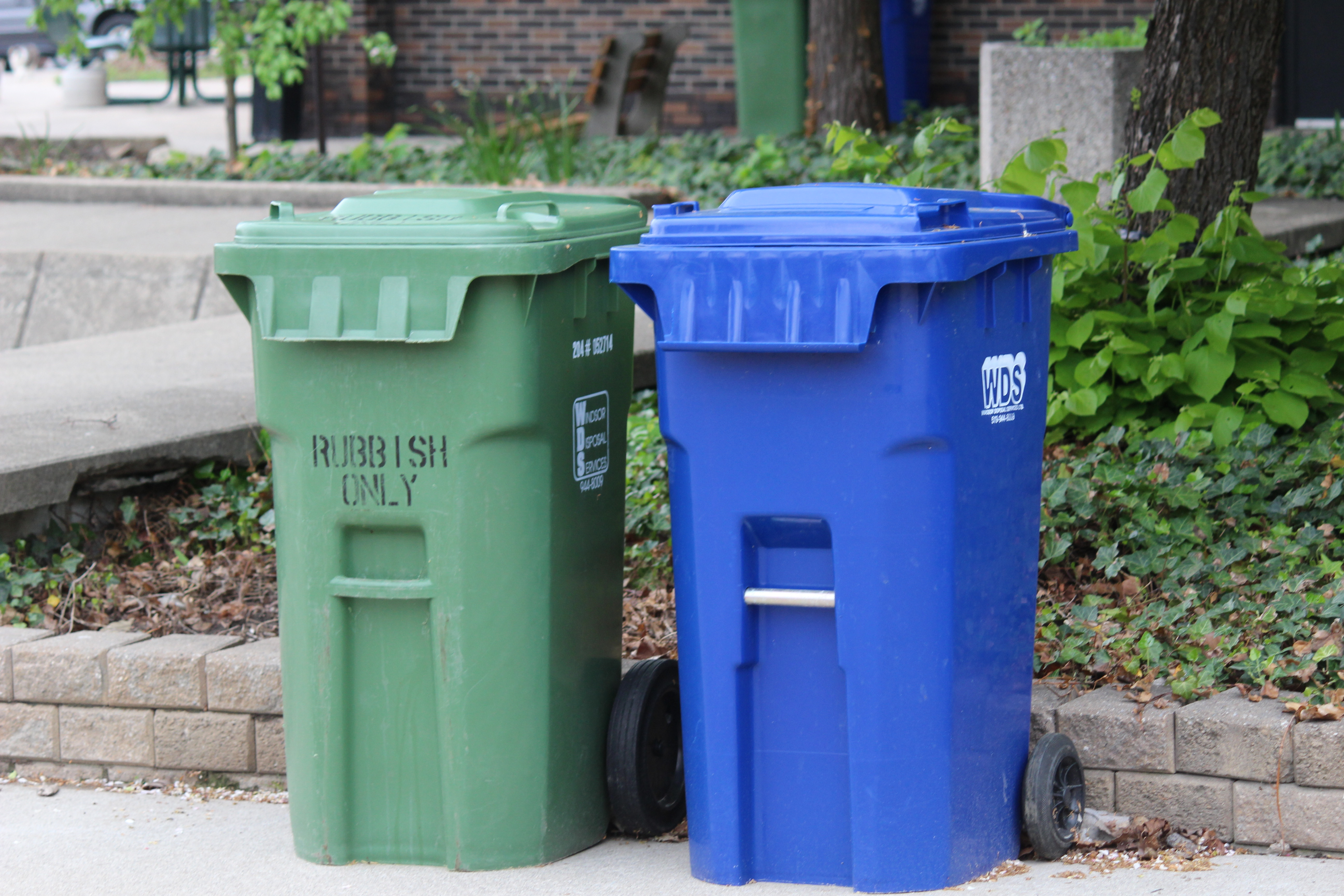 Recycling bins. (Photo by Adelle Loiselle)