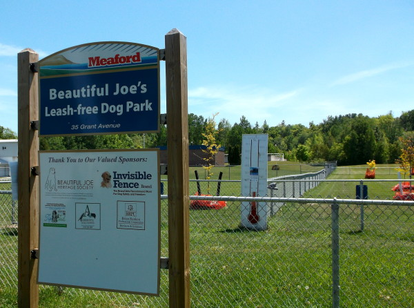 Part of the leash-free dog park on Grant Street in urban Meaford. At right are some of the trees planted in the park after it was set up by the Municipality. (Photo by James Armstrong)
