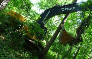 An excavator is seen in the Ojibway Nature Reserve in Windsor. (Photo courtesy Dan A. Ceti via Friends of Save Ojibway Facebook page)