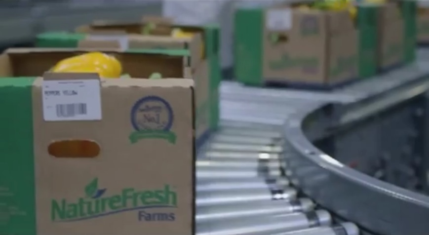A screenshot of a Nature Fresh commercial. (Photo by Ricardo Veneza)