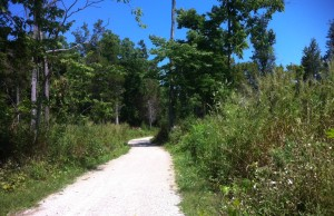 A bike trail at Point Pelee National Park. (Photo by Kevin Black)