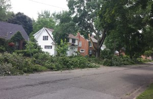 Storm damage on Maria St.  July 18, 2015. Photo submitted by Janet Robichaud via Blackburn Smartphone App.