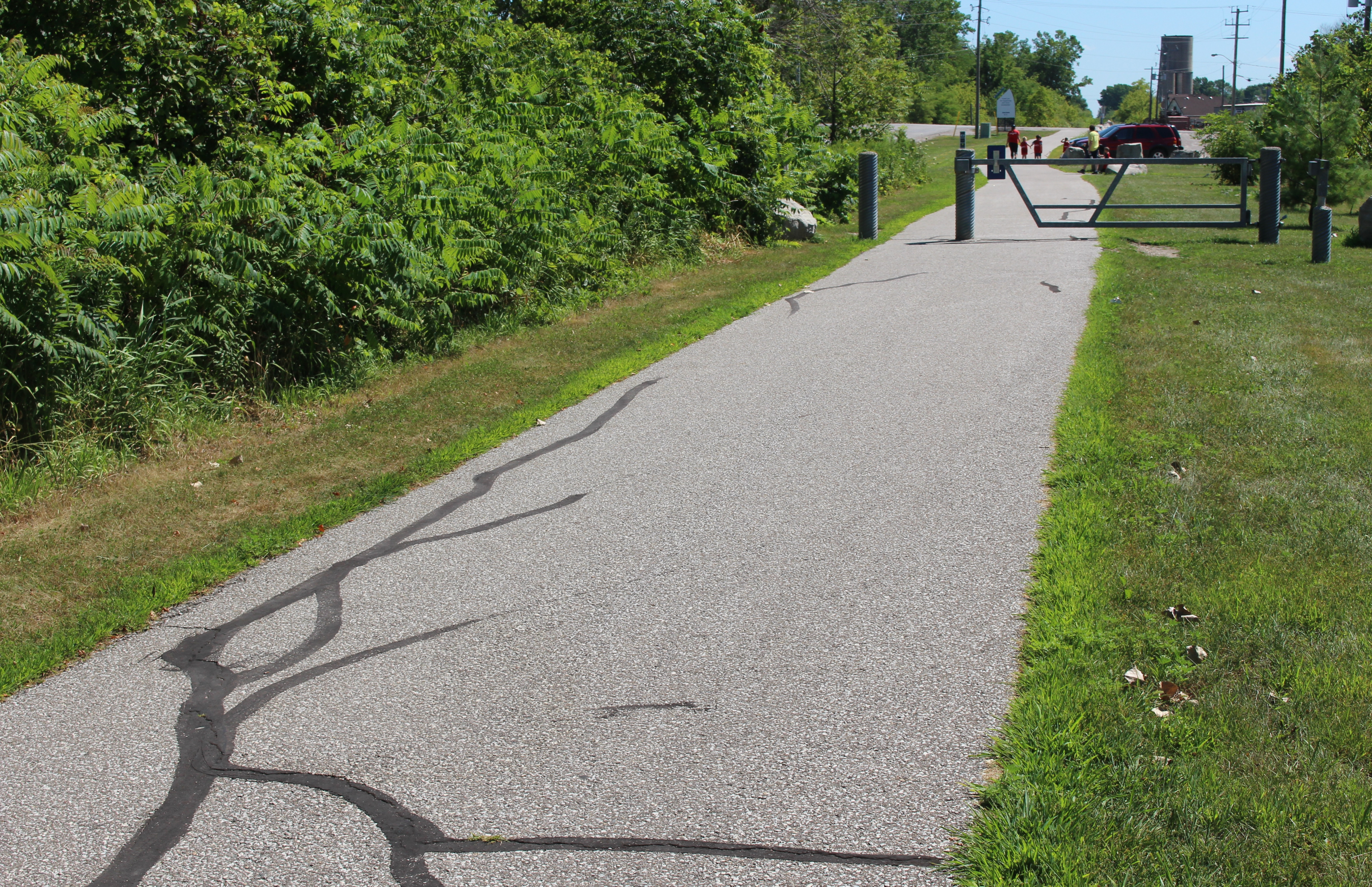Chrysler Canada Greenway trail in the Town of Essex, July 31, 2015. (Photo by Mike Vlasveld)