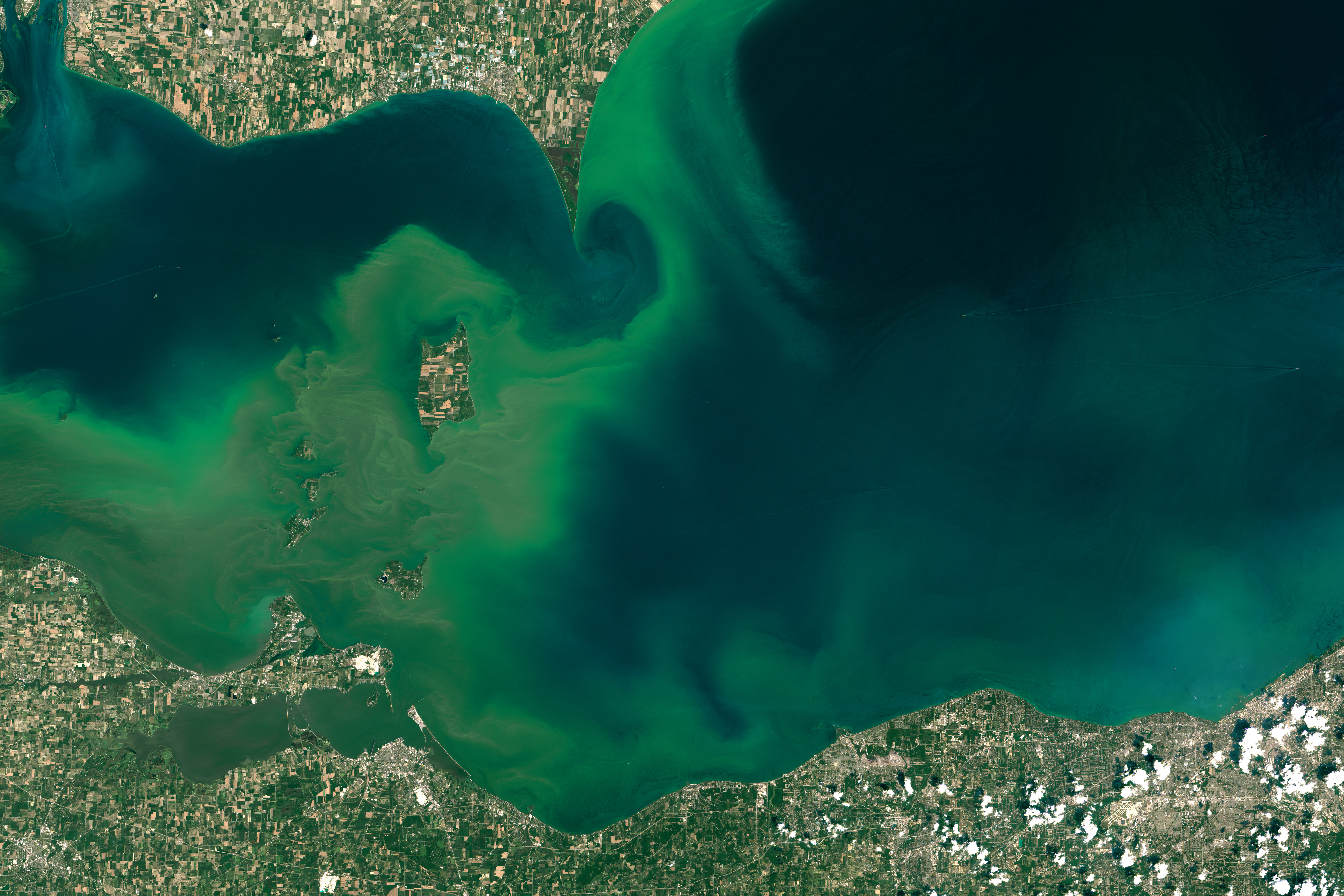 Lake Erie, July 28, 2015. (NASA Earth Observatory image by Joshua Stevens)