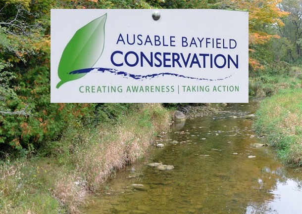 Ausable Bayfield Conservation logo (with background)