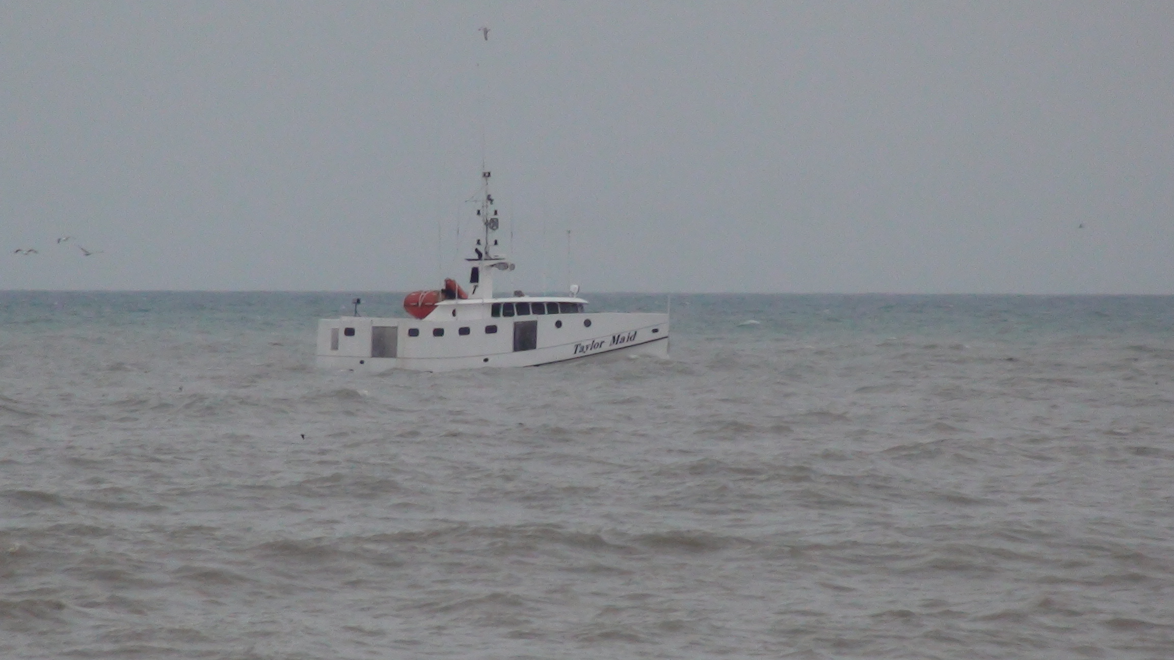 Taylor Maid fishing vessel leaves Wheatley Harbour. (File photo by Simon Crouch)