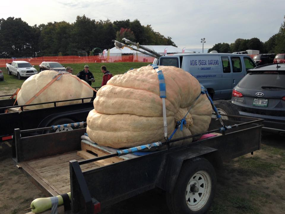 Pumpkinfest Repeat In Port Elgin